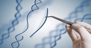 Gene editing successfully used to treat cervical cancer in mice