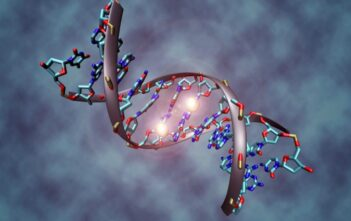 Oncology News Australia DNA tag linked to development of endometrial cancer