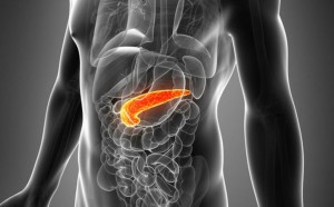 Pancreatic cancer_oncology news australia