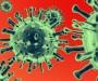 Virus_800x600