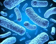 bacterial-infections-2