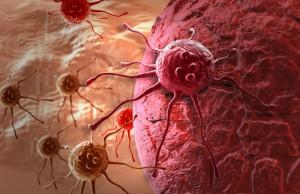 cancer cells 3d_800x500