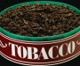 chewing tobacco_oncology news australia