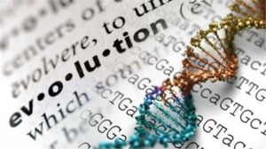 evolution concept_oncology news australia