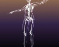 female 3d skeleton graphic_oncology news australia