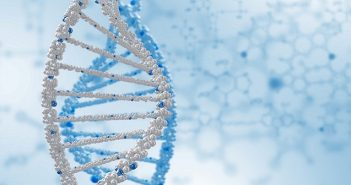 Researchers discover BRCA cancer cells' last defense