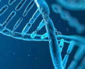 BRCA testing FREE for high risk patients