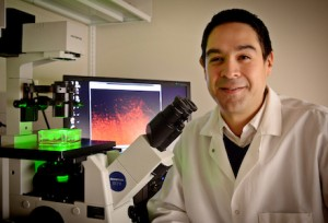 Dr. Shawn Hingtgen, shown here in his lab in Marsico Hall at UNC-Chapel Hill, and his team have made another stunning advance in the development of an effective treatment for glioblastoma, a common and aggressive brain cancer.