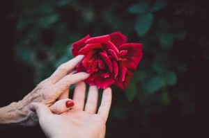 life death connection spirtuality age youth senior stages of life flower hands concept_oncology news australia