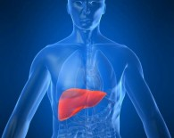 liver lrge