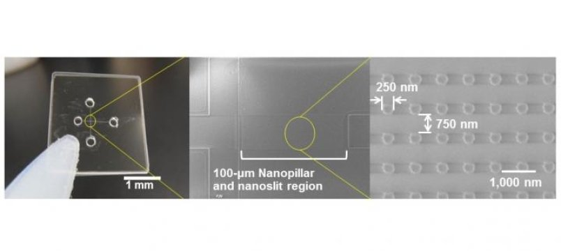 Quartz-made Nanopillars of 250-nm diameter were arrayed inside nanoslit region of 100-nm high and applied for ultrafast microRNA extraction from nucleic acids mixture. Credit: Noritada Kaji
