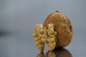 nut walnut_oncology news australia