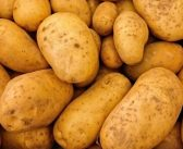 Tumour growth blocked by potato virus-chemo combo
