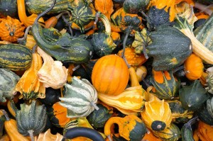 pumpkins vegetables beta ceratine_oncology news australia