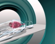 radiotherapy concept oncology news australia_800x45