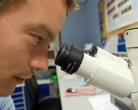 researcher scientist australian microscope_oncology news australia