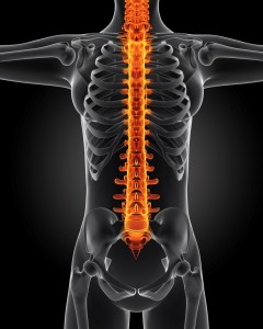 spine_oncology news australia