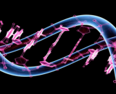 Major study uncovers new breast cancer genes and opens the door for more discoveries