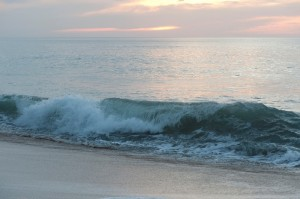 waves_oncology news australia_800x500